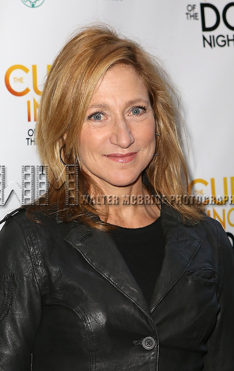 Edie Falco attends the Broadway Opening Night Performance of 'The Curious Incident of the Dog in the Night-Time'  at the Barrymore Theatre on October 5, 2014 in New York City.
