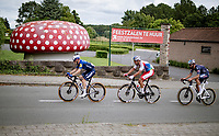 """At the bottom of the Tiegemberg there is a distintive huge muchroom and that's why many riders refer to it as """"Muschroom Berg""""<br /> <br /> Grote Prijs Marcel Kint 2021<br /> One day race from Zwevegem to Kortrijk (196km)<br /> <br /> ©kramon"""