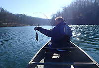 Alan Bland of Rogers catches a rainbow trout on Dec. 4 2020 at Lake Atalanta in Rogers. Arkansas Game and Fish Commission stocks rainbow trout for winter fishing at several lakes and ponds across the state. Bland caught this fish on a small jig.<br />(NWA Democrat-Gazette/Flip Putthoff)