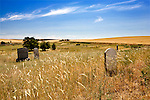 Wasco Methodist pioneer cemetary was established in March 1872 by a private couple, later Sold to the Wasco Methodist Church in 1881 for under ten dollars.  Find the cemetary by following scenic Mud Holler Road off U.S. 97 south of the Columbia River along the Oregon Trail.
