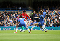 Pictured: Ki Sung Yeung runs at Chelsea defenders Ashley Cole and david Luiz<br /> Barclays Premier League, Chelsea FC (blue) V Swansea City,<br /> 28/04/13