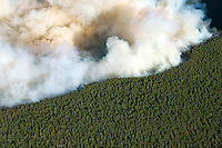 East Peak wildfire near LaVeta, Colorado.  June 2013