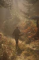 Europe/France/Limousin/19/Corrèze/Forêt Domaniale de Sédières: Monsieur Faurie cherche les champignons - [AUTO N°A13]