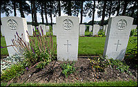 BNPS.co.uk (01202 558833)<br /> Pic: PhilYeomans/BNPS<br /> <br /> Trooper Edmunds grave at the Oosterbeek cemetery near Arnhem.<br /> <br /> Arnhem flowergirl finally honoured - Willemien was suprised to be presented with flowers and a certificate by Parachute Regiment veterans at the weekend.<br /> <br /> A Dutch woman who has tended to the grave of a British paratrooper killed at the Battle of Arnhem for 75 years has been presented with flowers from his regiment as a token of their gratitude.<br /> <br /> Every year Willemien Rieken, 84, lays flowers at Oosterbeek War Cemetery in memory of Trooper William Edmond who was shot by a German sniper after landing in Holland in World War Two.<br /> <br /> She was surprised at his grave by a member of Tpr Edmond's 1st Airborne Reconnaissance Squadron at a ceremony marking the 75th anniversary of the battle.