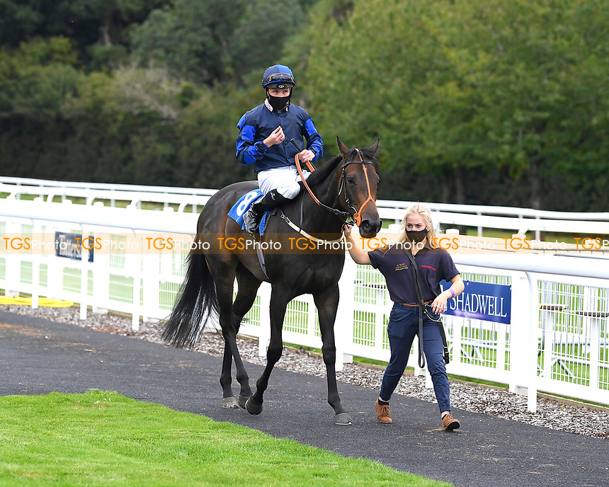 Winner of The Irish Stallion Farms EBF Fillies' Nursery Stakes Rania (8) ridden by Jason Watson and trained by Sylvester Kirk is led into the Winners enclosure during Horse Racing at Salisbury Racecourse on 11th September 2020