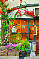 Flowers and vines adorn a shop window in downtown St. Augustine, Florida
