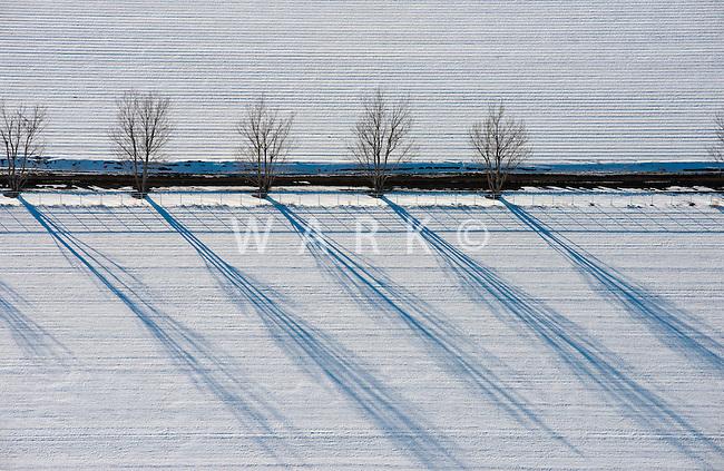 Farm fields and tree shadows. Feb 2014. Pueblo County, Colorado. 89784