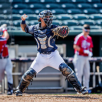 6 June 2021: New Hampshire Fisher Cats catcher Chris Bec in action against the Binghamton Rumble Ponies at Northeast Delta Dental Stadium in Manchester, NH. The Rumble Ponies defeated the Fisher Cats 9-6 to close out their 6-game series. Mandatory Credit: Ed Wolfstein Photo *** RAW (NEF) Image File Available ***