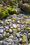 Ireland, County Galway, Doorus Peninsula near Kinvarra: Pebbles, rocks and seaweed on Traught beach | Irland, County Galway, Doorus Halbinsel bei Kinvarra: Kieselsteine, Geroell und Seetang am Traught beach