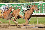 05-SEPT-10: Wildcat Brief, Elvis Trujillo up, wins the Icecapade Stakes.