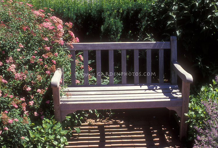 Wooden garden bench with roses