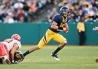 October 22th, 2011:  Zach Maynard of California scrambles through the line of scrimmage during a game against Utah at AT&T Park in San Francisco, Ca  -  California defeated Utah  34 - 10