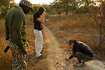 Cheetah (Acinonyx jubatus) biologists, Kim Young-Overton and Xia Stevens, looking at tracks with park scout, Kafue National Park, Zambia