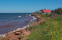Canada Prince Edward Island, P.E.I. Prim Point shore and waves with red roof house in summer with wild flowers