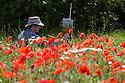 10/07/15<br /> <br /> Artist, Mark Preston, from Derby, paints a field of poppies near Brailsford, Derbyshire.<br /> <br /> <br /> All Rights Reserved: F Stop Press Ltd. +44(0)1335 418629   www.fstoppress.com.