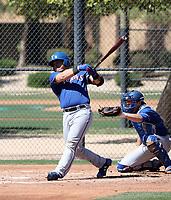Yohel Pozo - Texas Rangers 2019 spring training (Bill Mitchell)