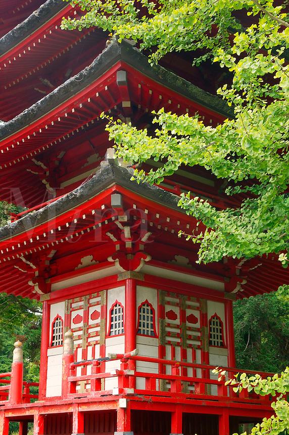 A Buddhist Pagoda at the Japanese Tea Garden, Golden Gate Park, San Francisco, California