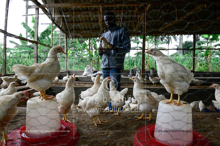 NIGERIA, Oyo State, Ibadan, village Shukuru, chicken farm, breeding of broiler in stable / Aufzucht von Masthaehnchen, Broiler, FADU Farmer Kayode Adedeji