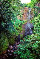 Lush scenic Wailua waterfall off the main road past Hana town.