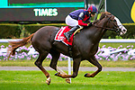 OCTOBER 6, 2018 : Have At It, ridden by David Cohen, wins the Hill Prince Stakes on Champagne Stakes Day at Belmont Park on October 6, 2018 in Elmont, NY.  Sue Kawczynski/ESW/CSM