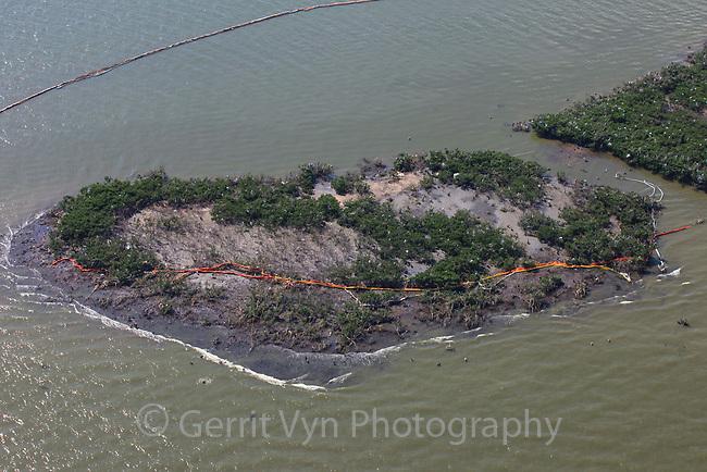 Oiled bird nesting colonies in Barataria Bay. Plaquemines Parish, Louisiana. July 2010.