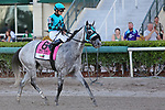 HALLANDALE BEACH, FL - JUNE 30: #8  X Y Jet (FL) with jockey Emisael Jaramillo on board, heads to the winners circle, as spectators watch him go by after winning the Smile Sprint Handicap GIII Stakes at Gulfstream Park on June 30, 2018 in Hallandale Beach, Florida. (Photo by Liz Lamont/Eclipse Sportswire/Getty Images)