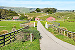 Farm on Highway 1 near Jenner, CA in Sonoma County.