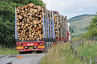 Load of logs being transported, Whitewell, Lancashire.