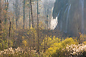 Detail of Veliki Prstavci waterfalls, Plitvice Lakes National Park, Croatia. November.