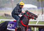 DEL MAR, CA - OCTOBER 27:  Sharp Azteca, trained by Jorge Navarro, exercises in preparation for the Breeders' Cup Las Vegas Dirt Mile at Del Mar Thoroughbred Club on October 27, 2017 in Del Mar, California. (Photo by Scott Serio/Eclipse Sportswire/Breeders Cup)