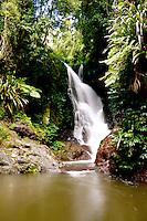 Elabana Falls in Lamington National Park, Queensland