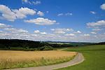 Europa, DEU, Deutschland, Rheinland Pfalz, Eifel, Vulkaneifel, Mehren, Agrarlandschaft, Getreide, Feld, Anbau, Himmel, Wolken, Cumuluswolken, Weg, Strasse, Kategorien und Themen, Agrar, Landwirtschaft, Landwirtschaftlich, Landwirtschaftliche Produkte, Natur, Naturfoto, Naturfotos, Naturfotografie, Naturphoto, Naturphotographie, Landschaft, Landschaften, Landschaftsfoto, Landschaftsfotografie, Landschaftsphoto, Landschaftsphotographie......[Fuer die Nutzung gelten die jeweils gueltigen Allgemeinen Liefer-und Geschaeftsbedingungen. Nutzung nur gegen Verwendungsmeldung und Nachweis. Download der AGB unter http://www.image-box.com oder werden auf Anfrage zugesendet. Freigabe ist vorher erforderlich. Jede Nutzung des Fotos ist honorarpflichtig gemaess derzeit gueltiger MFM Liste - Kontakt, Uwe Schmid-Fotografie, Duisburg, Tel. (+49).2065.677997, ..archiv@image-box.com, www.image-box.com]