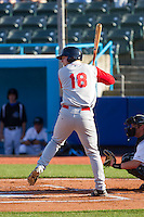 Michael Katz (18) of the Brooklyn Cyclones at bat against the Hudson Valley Renegades at Dutchess Stadium on June 18, 2014 in Wappingers Falls, New York.  The Cyclones defeated the Renegades 4-3 in 10 innings.  (Brian Westerholt/Four Seam Images)