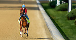 LOUISVILLE, KY - MAY 02: Gun Runner, with regular rider Florent Geroux (trained by Steven Asmussen and owned by Winchell Thoroughbreds LLC and Three Chimneys Farm),exercises and prepares during morning workouts for the Kentucky Derby and Kentucky Oaks at Churchill Downs on May 2, 2016 in Louisville, Kentucky. (Photo by John Voorhees/Eclipse Sportswire/Getty Images)
