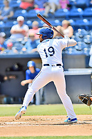 Asheville Tourists designated hitter Niko Decolati (19) swings at a pitch during a game against the West Virginia Power at McCormick Field on June 2, 2019 in Asheville, North Carolina. The  Power defeated the Tourists 5-4. (Tony Farlow/Four Seam Images)