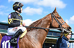 LEXINGTON, KY - APRIL 09: #10 Undrafted and jockey Joe Bravo win the 20th running of The Shakertown (Grade 2) $200,000 at Keeneland racetrack for owner Wes Welker and Sol Kumin and trainer Wesley Ward. April 9, 2016 in Lexington, Kentucky. (Photo by Samantha Bussanich/Eclipse Sportswire/Getty Images)