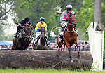 22 May 2011.   #3 Mecklenburg and jockey Gustav Dahl finish second in the Jay Trump Timber, Maiden Special Weight going Three and One Eighth Miles.
