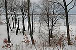 Winter scenes, TTA