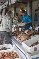 France, Pas-de-Calais (62), Boulogne-sur-Mer:     Etal des pêcheurs au port de pêche, Vente directe // France, Pas de Calais, Boulogne sur Mer:   Stall fishermen at the fishing port, direct sales