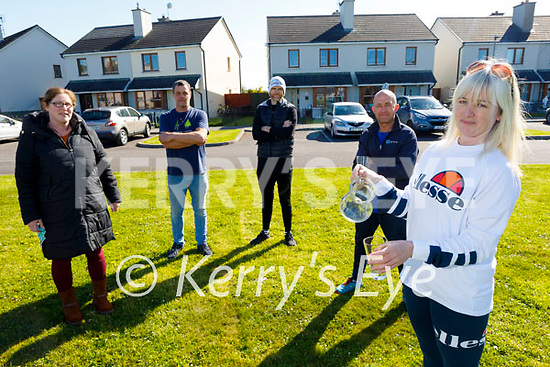 Residents of An Fearann in Ardfert on Tuesday, who are having major issues with their water supply. Front right: Caroline O'Sullivan. Back l to r: Sinead Lawlor, Kevin Murphy, Paudi O'Sullivan and Gordon Baxter.