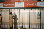 DUBAI,UNITED ARAB EMIRATES-MARCH 22:  Arrogate is decided to start from 9 in Dubai World Cup at Meydan racecourse on March 22,2017 in Dubai,United Arab Emirates (Photo by Kaz Ishida/Eclipse Sportswire/Getty Images)