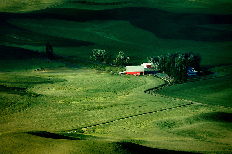 Sunrise over farmland with barn and house in mostly wheat fields. The Palouse near Colfax, Washington
