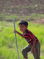 Surprised boy in the rice fields, rural area scenery near Battambang, Cambodia
