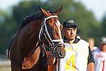 July 29, 2012 Haskell contender Gemologist, trained by Todd Pletcher, owned by Winstar Farm. Monmouth Park Racetrack, Oceanport, New Jersey  ©Joan Fairman Kanes/Eclipse Sportswire