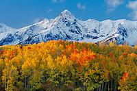 Aspens near Dallas Divide<br />   and the Sneffels Range<br /> San Juan Mountains <br /> Rocky Mountains,  Colorado