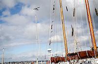 South Lake Union photos in Seattle, Wash. 3/1/12. Photo by Daniel Berman/www.bermanphotos.com