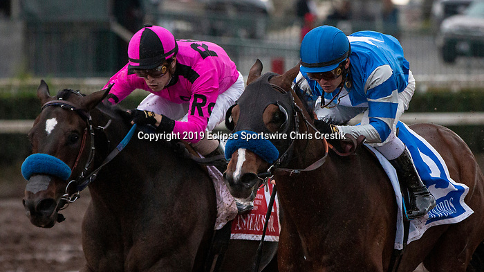 CYPRESS, CA: December 07: #3 Thousand Words (inside) beats out #1 Anneau D'or in the Grade II Los Alamitos Futurity at Los Alamitos Race Course on December 07, 2019 in Cypress, California (Photo by Chris Crestik/Eclipse Sportswire)