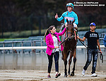 ELMONT, NY - OCTOBER 08: Irad Ortiz Jr., giving thumbs up to some fans, after winning the 39th Running of The Flower Bowl, atop Lady Eli #5, on Jockey Club Gold Cup Day at Belmont Park on October 8, 2016 in Elmont, New York. (Photo by Douglas DeFelice/Eclipse Sportswire/Getty Images)