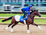October 25, 2018 : Thunder Snow (IRE), trained by Saeed bin Suroor, exercises in preparation for the Breeders' Cup Classic  at Churchill Downs on October 25, 2018 in Louisville, Kentucky. Scott Serio/Eclipse Sportswire/CSM