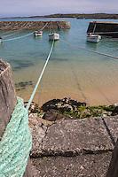 Europe/France/Normandie/Basse-Normandie/50/Presqu'île du Cotentin/Pointe de La Hague/St-Germain-des-Vaux: Port Racine, certainement le plus petit port de France en activité //  France, Manche, Cotentin, La Hague, Saint Germain des Vaux, Racine port, the smallest harbour in France